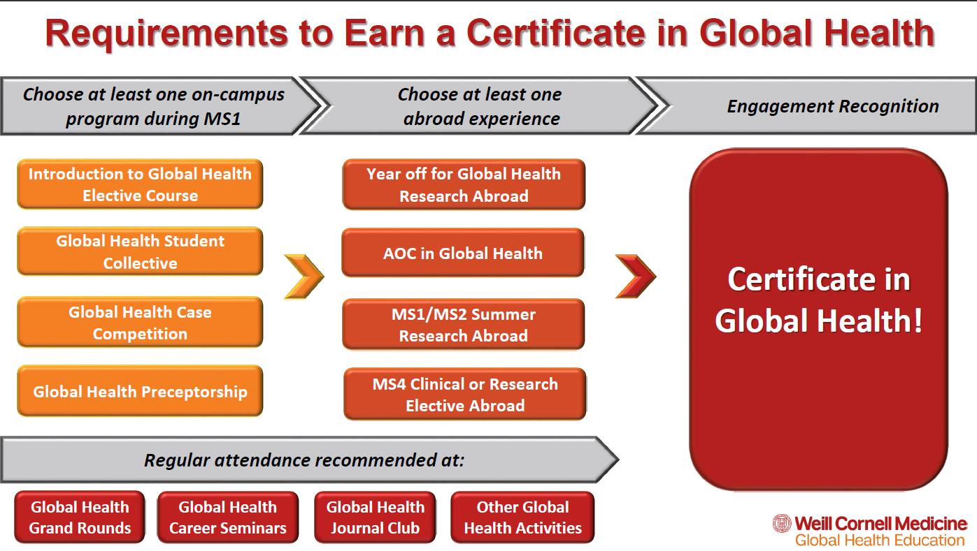 Certificate In Global Health International Programs